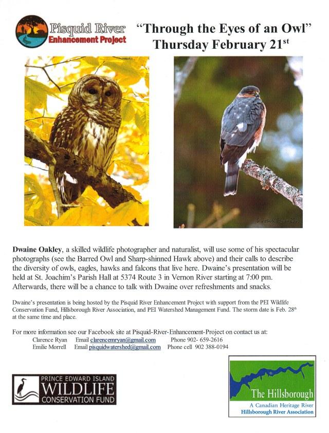 Poster PREP Through the Eyes of an Owl02142019
