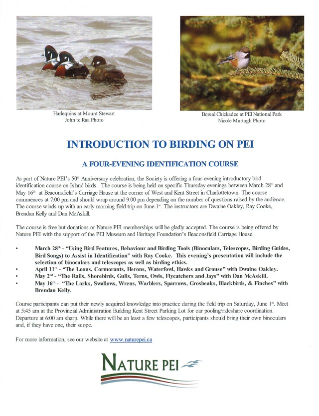 1 - Poster Introduction to Birding on PEI03202019