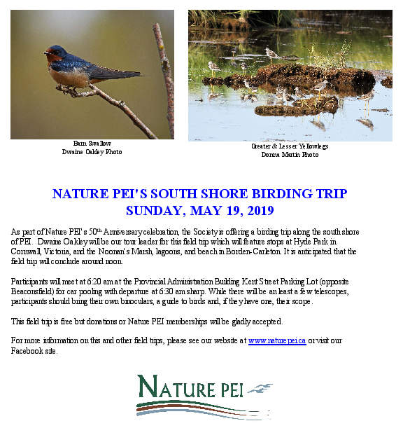 Poster South Shore Birding Trip May 19 2019