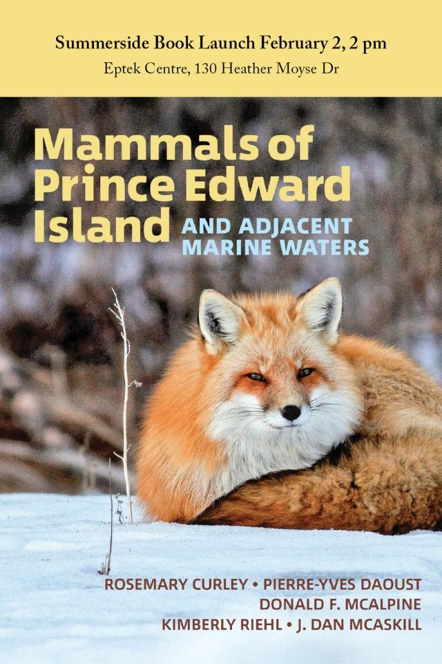 Mammals Invite Postcard Summerside
