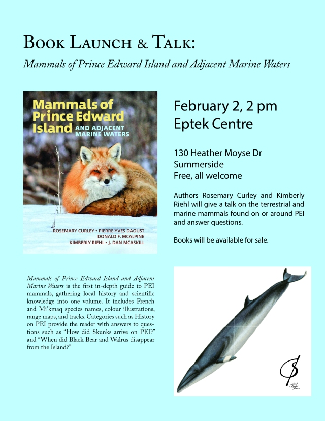 Summerside Book Launch Poster blue background